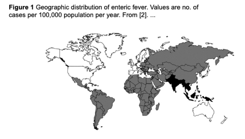 typhoid fever world map